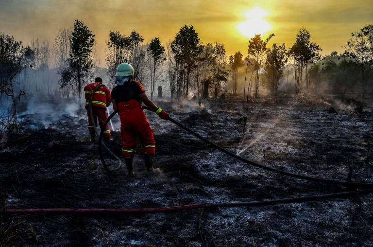 Incêndio em floresta na Indonésia. Os incêndios que devastam grandes áreas de florestas também liberam grandes quantidades de CO2.