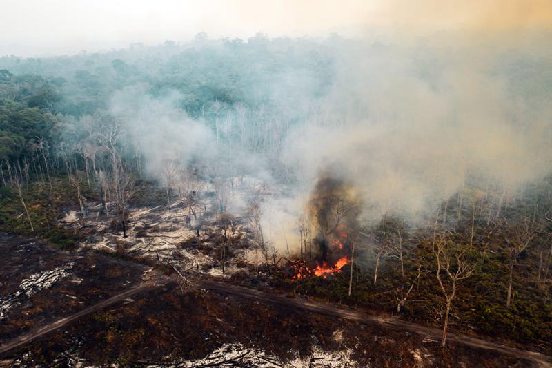De janeiro a agosto de 2019, o número de queimadas na Amazônia foi 111% superior ao registrado no mesmo período do ano passado