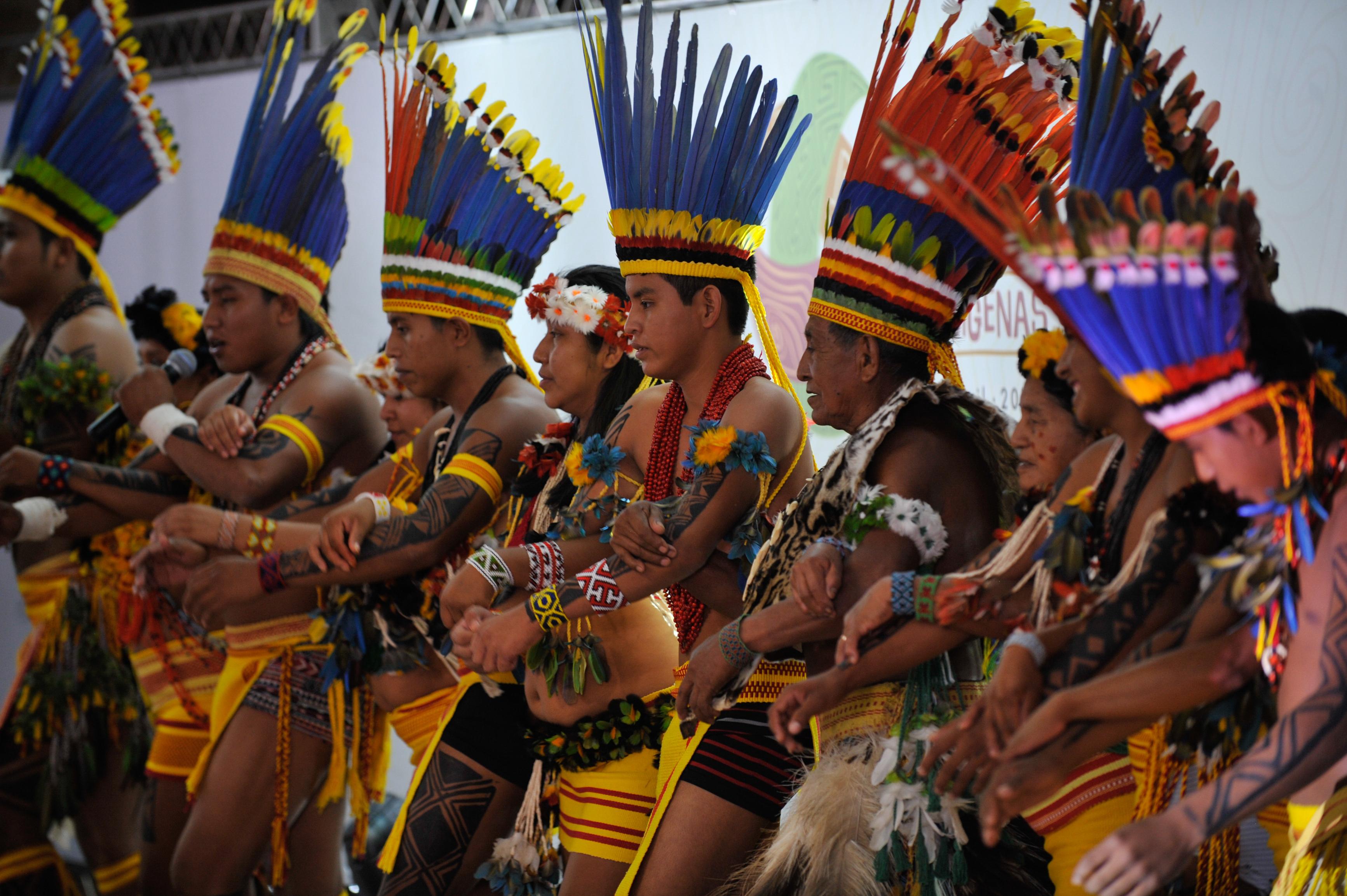 A pesquisa também mapeou invasões de terras indígenas, exploração ilegal de recursos naturais e danos diversos ao patrimônio dessas populações.