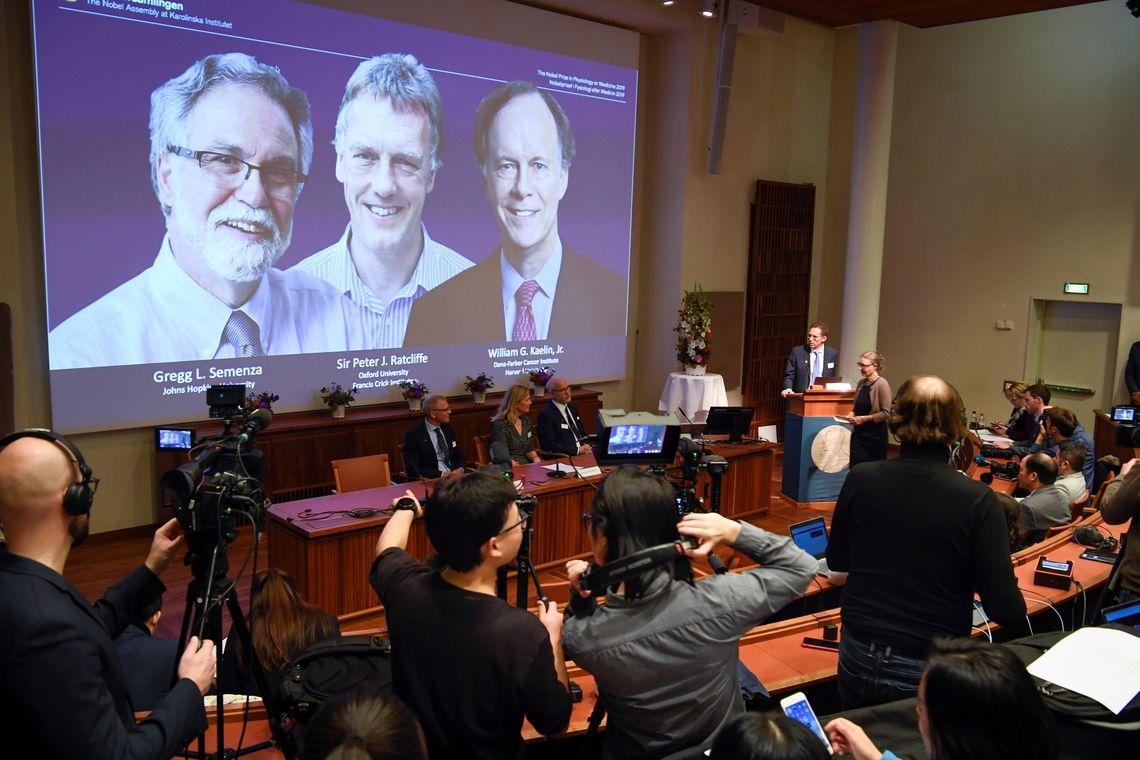 O Prêmio Nobel de Medicina foi atribuído nesta segunda-feira a dois americanos, William Kaelin e Gregg Semenza, ao britânico Peter Ratcliffe.