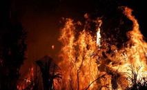 Fogo atinge área próxima a Altamira, no Pará, em agosto deste ano. (Nacho Doce/Reuters)