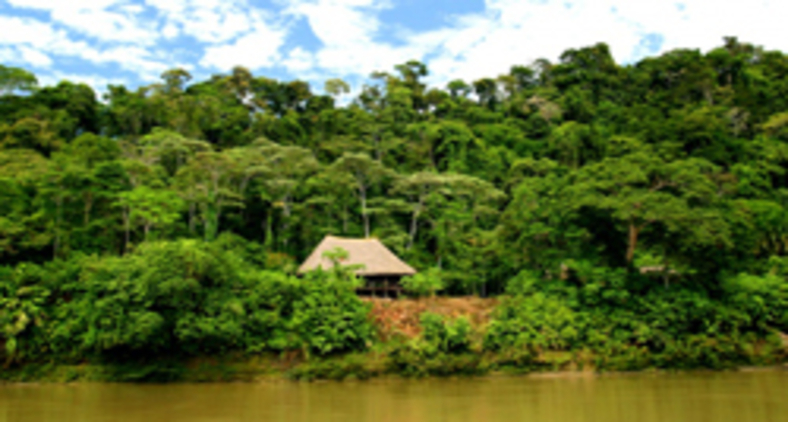 A Colômbia, nesse aspecto, foi um dos primeiros países da América Latina a apresentar normas específicas sobre a proteção dos recursos naturais e do meio ambiente (Reprodução)