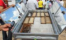 Uso de energia solar para beneficiamento de na apicultura no interior do Piauí. (CASA APIS/Divulgação)