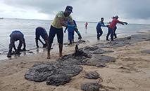 A prefeitura de Tamandaré confirmou pela manhã que parte dos arrecifes, próximos à praia de Carneiros, foi atingida pela substância. (Ibama)