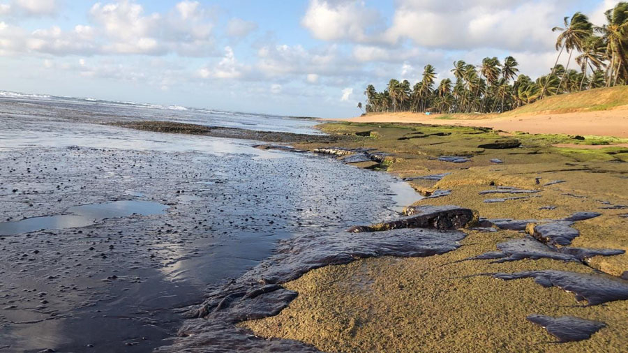Toneladas de óleo na praia do Forte no litoral baiano