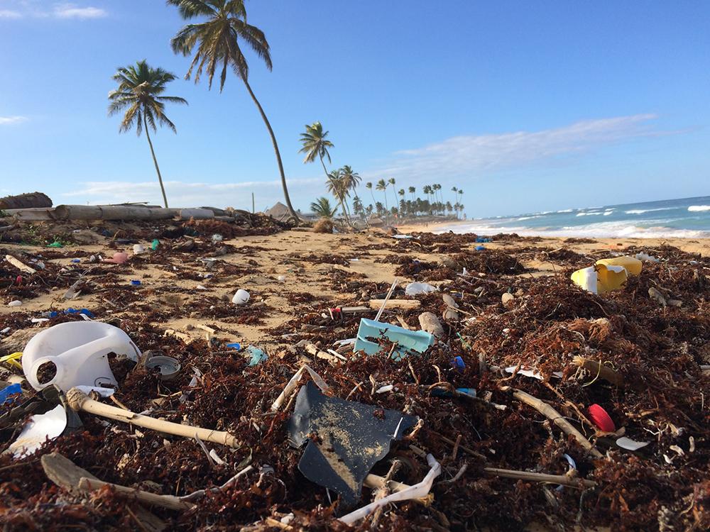 São muitas as causas da maior crise ecológica da história, porém na sua raiz se encontra o pecado