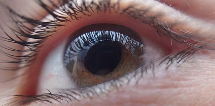 Degeneração macular e glaucoma estão entre as doenças mais citadas pelos pacientes.