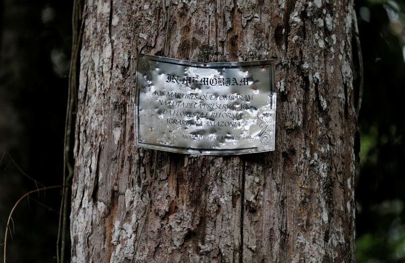 Placa cravada de tiros em árvore perto do local do assassinato da irmã Dorothy Stand em Anapu, no Pará.