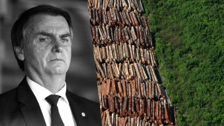 Bolsonaro não deve é recusar ajuda financeira de outro ou outros países para combate ao fogo eventual e ao desmatamento sistemático da grande floresta.