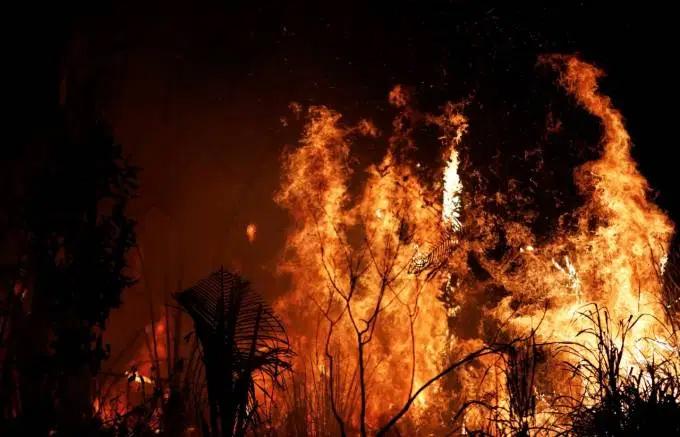 Fogo atinge área próxima a Altamira, no Pará, em agosto deste ano.