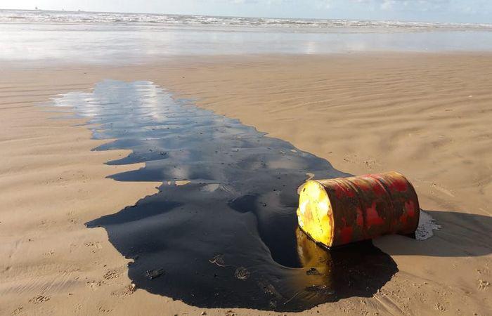 299 praias ainda estão oleadas
