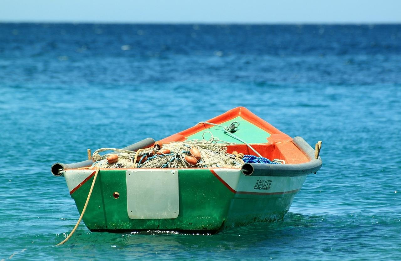 O cultivo de alimentos oceânicos geralmente tem um impacto menor no clima do que a agricultura terrestre