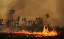 Incêndio atinge terra indígena Tenharim Marmelos, na floresta amazônica. (Bruno Kelly/Reuters)