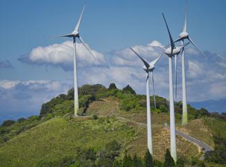 Políticas públicas, globalização e desenvolvimento sustentável são foco de uma das linhas de pesquisa. (Pixabay)
