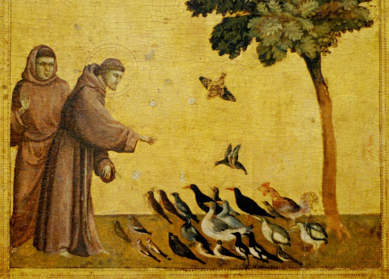 Obra de Giotto retrata o santo italiano em atividades mundanas carregadas de divindade