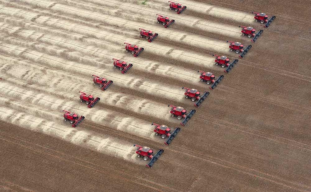 Tratores fazem colheita de soja em Campo Novo do Parecis, Mato Grosso