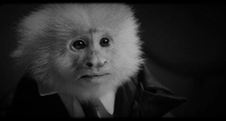 Curta tem tema e estética de filme noir com tintas de expressionismo alemão (Divulgação/ Netflix)