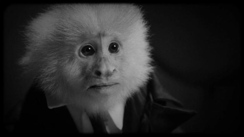 Curta tem tema e estética de filme noir com tintas de expressionismo alemão