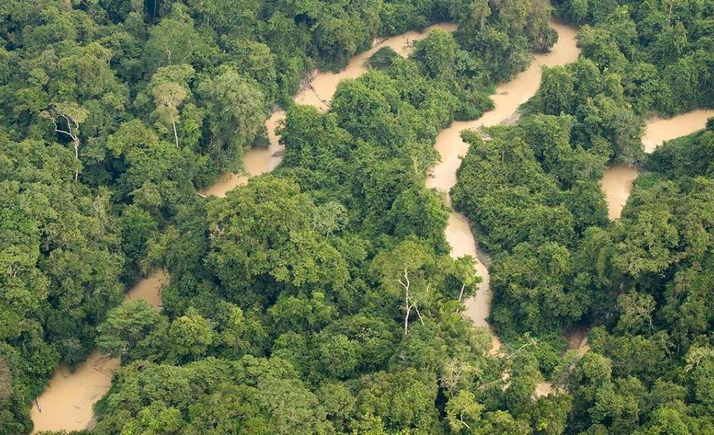 A Amazônia tem sido a principal fonte de desgaste da imagem do país no exterior