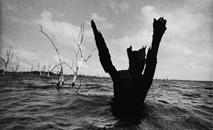 'O reflexo do lado' relata a vida de pessoas que sofreram impacto pela construção da usina (Amazônia Real)