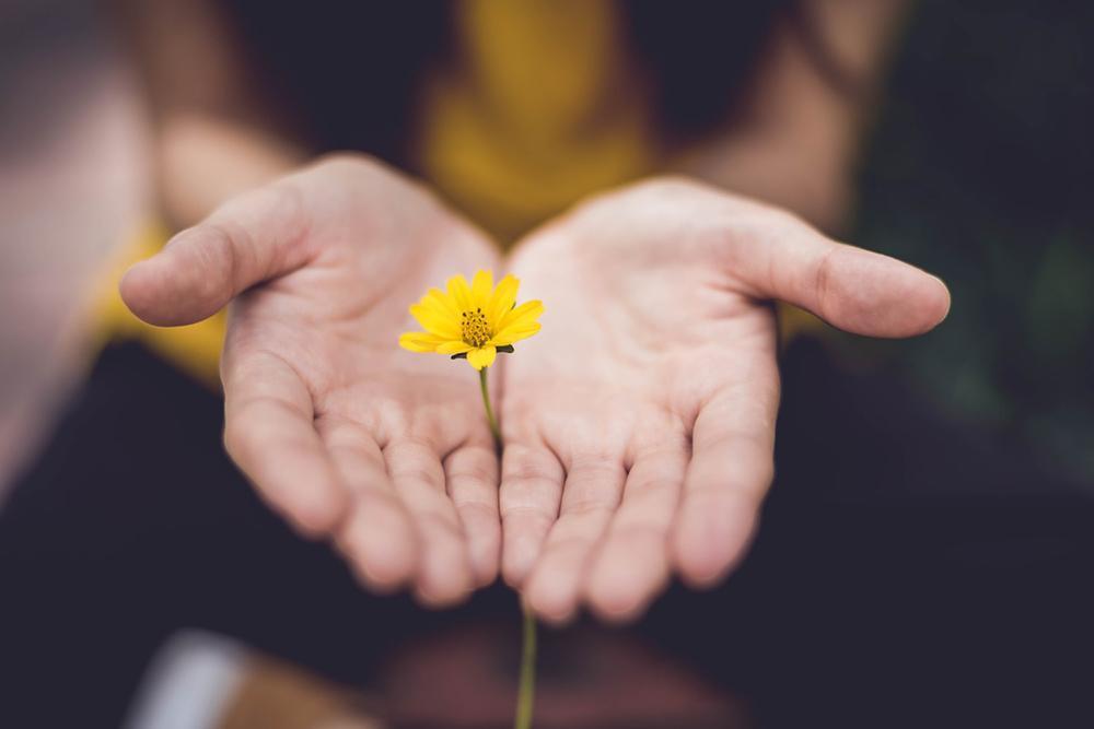 O perdão é um ato de fé na bondade fundamental do ser humano.