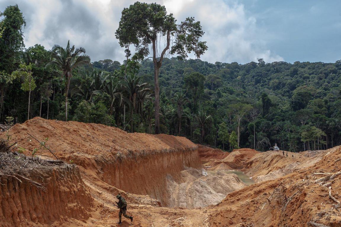 Áreas protegidas no Pará estão entre as mais ameaçadas e pressionadas da Amazônia