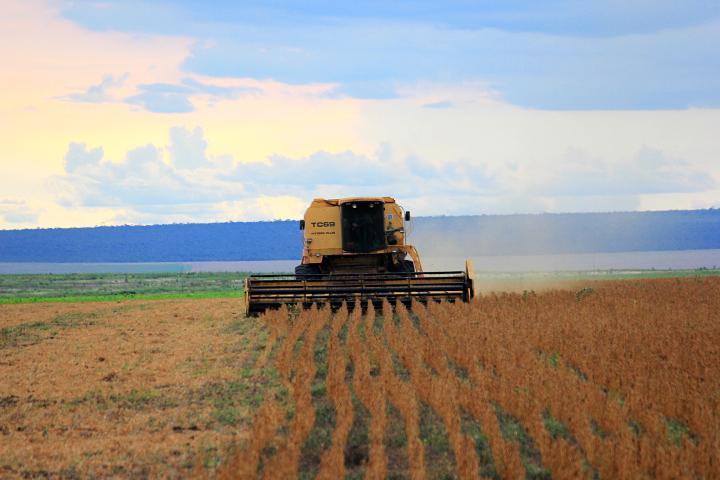 Empresas fabricantes e produtores rurais chegaram a fazer mais de 20 reuniões na Anvisa desde que a proibição foi publicada, em 2017