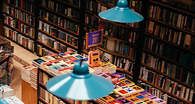 Monteiro Lobato dizia que um país se faz com homens e livros (Adolfo Félix/ Unsplash)