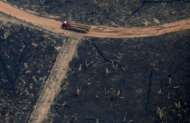 AMBIENTE-AMAZONIA-DESMATAMENTO:Desmatamento começa mais cedo na Amazônia e dobra em janeiro na comparação anual