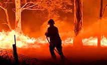 Desde o final de setembro de 2019, violentos incêndios florestais devastam a Austrália. (Saeed Khan / AFP)