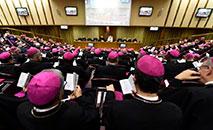 Reunião do 15º Conselho Ordinário da Secretaria Geral do Sínodo (Divulgação/Vatican Media)