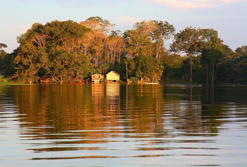 'Querida Amazônia' ressalta a urgência de dizer não à indiferença