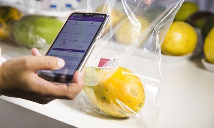 Objetivo da ferramenta de nome 'Yva' é reduzir desperdício de alimentos