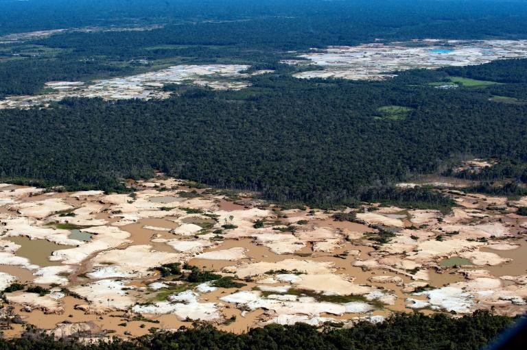 A Amazônia é a maior floresta tropical do mundo e cerca de 20% da bacia amazônica desapareceu desde 1970