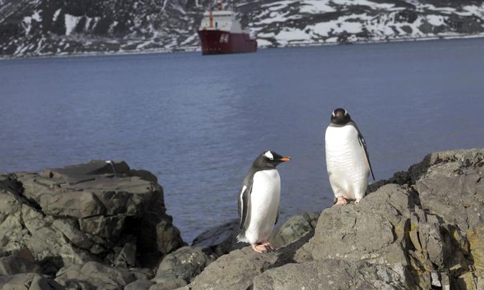 Para cientistas, perda de gelo é resultado do aquecimento global