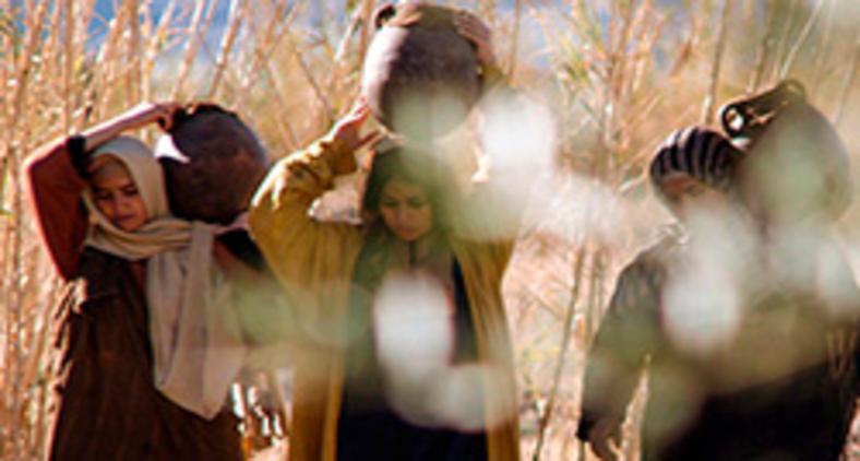 Teologia feminista tem desempenhado importante papel de leitura das Escritura Sagradas, pensando o papel e o lugar da mulher e do feminino na história da salvação (Free Bible Images/ Lumo Project)