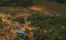 Garimpo ilegal dentro da Terra Indígena Munduruku, no Pará, em setembro de 2019 (Christian Braga / Greenpeace)