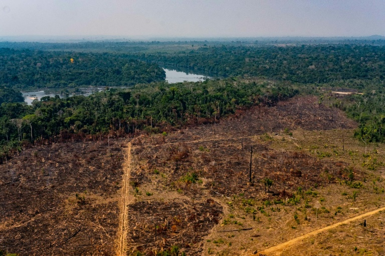 Desmatamento na bacia amazônica na cidade de Colniza, em 2019
