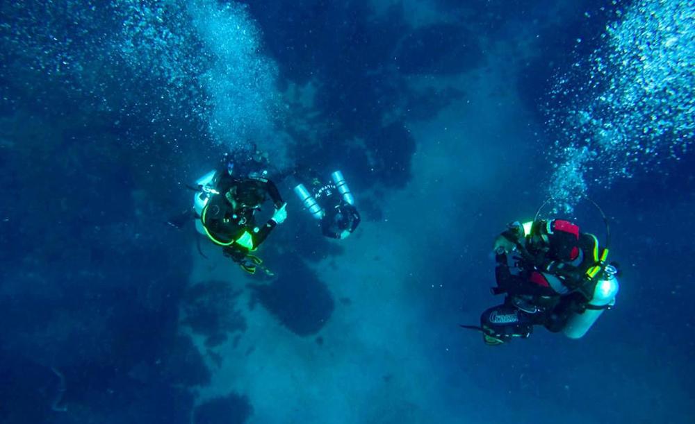 ICMBio estabeleceu diretrizes padrão pra mergulho em UCs