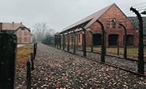A conivência da população com o regime nazista é exemplo de banalização do mal. Na foto, memorial de Auschwitz (Jean Carlo Emer/ Unsplash)