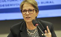 Ministra da Agricultura Tereza Cristina (Marcelo Camargo/ABr)