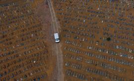 Imagem do cemitério público Nossa Senhora Aparecida, em Manaus (Bruno Kelly/Amazônia Real/13/11/2020)