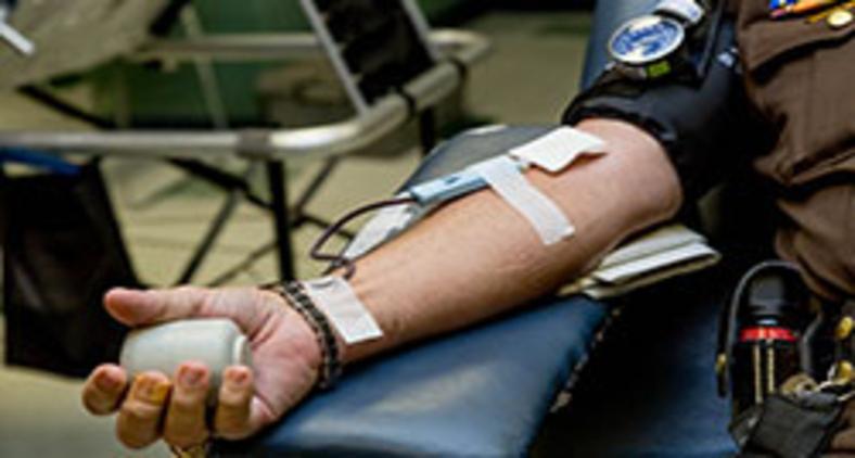 Doar sangue é um ato de amor que foi judicializado! (Unsplash/ LuAnn Hunt)