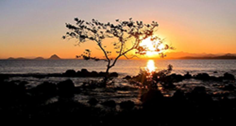 Foi num desses momentos mágicos, num silencioso recôndito da praia dos Castelhanos, no outono de 2020, que me coloquei, mineiramente, a matutar (Evaldo D'Assumpção)