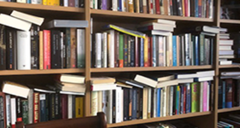 Entrei no meu escritório e sentei-me à frente da minha estante lotada de livros (Lev Chaim)