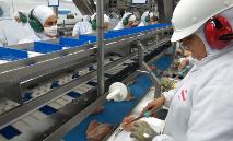 Número de contaminados pelo novo coronavírus em frigoríficos do país chama atenção (ANPr/ SINDIAVIPAR)