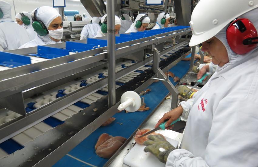 Número de contaminados pelo novo coronavírus em frigoríficos do país chama atenção