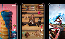 Embora o TikTok já fizesse sucesso antes do isolamento, o app teve um pico de crescimento na quarentena. (Divulgação)