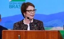 A ministra diz que parte das críticas ao país está relacionada aos interesses comerciais e de concorrência (Guilherme Martimon/MAPA)