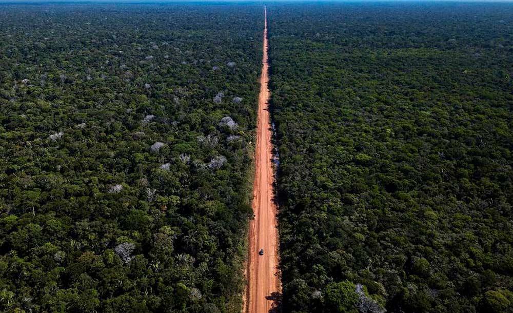 A Br-319 corta regiões bem preservadas e pode causar danos a biomas ricos da Amazônia